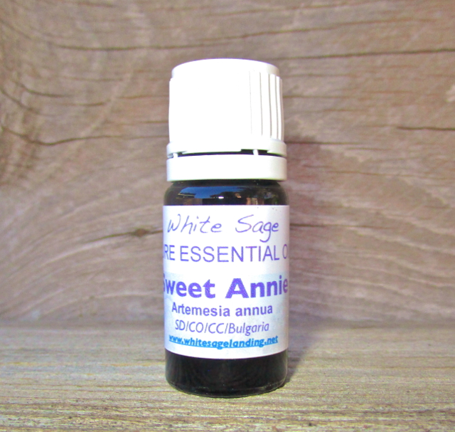 Sweet Annie Essential Oil 5 ml