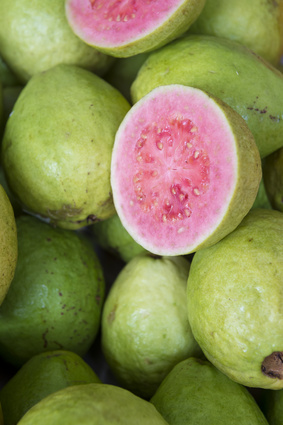 Guava Seed Botanical Oil