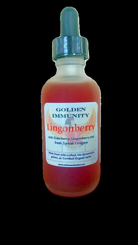 Golden Immunity Lingonberry 1